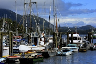 Tofino Harbour (colour)